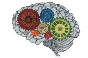 brain-he0901-tease