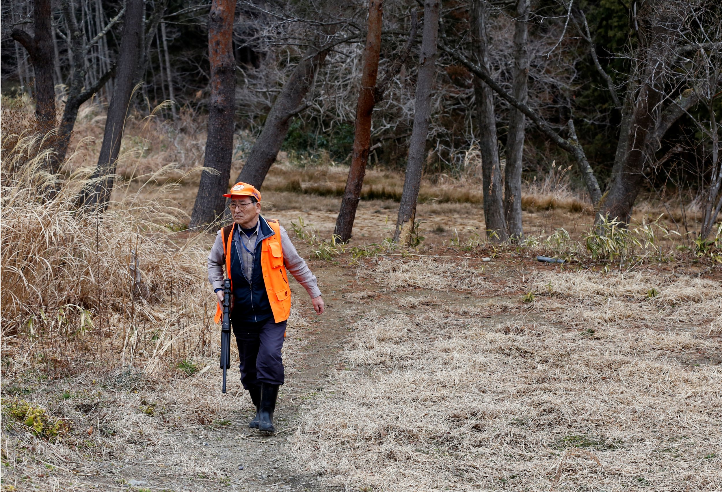 Man hunts wild boars in Fukushima