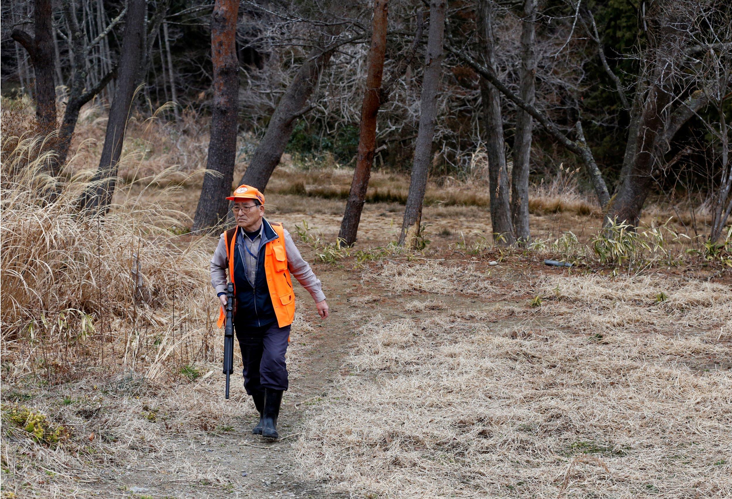 Man hunts wild boars in Fukushima