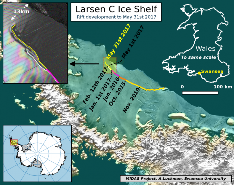 Larsen C