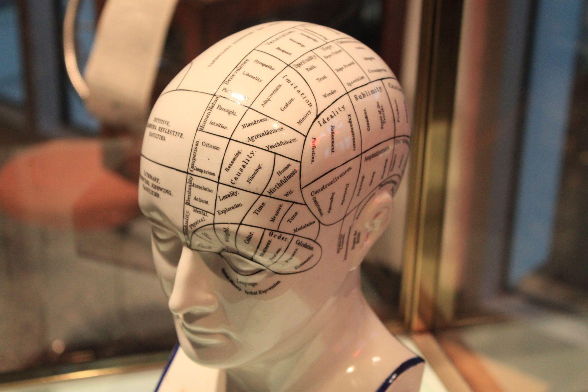 Like Intelligence, Positive Personality Traits Are Linked