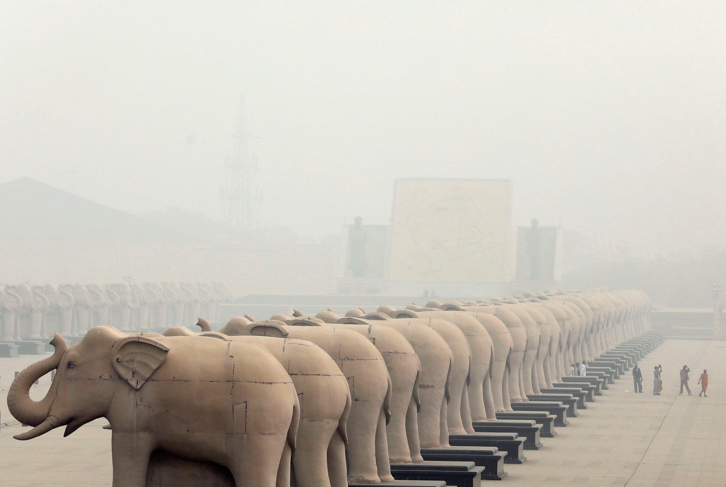 Elephants smog