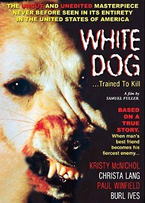 dogs-racism-raina-column-vl.jpg