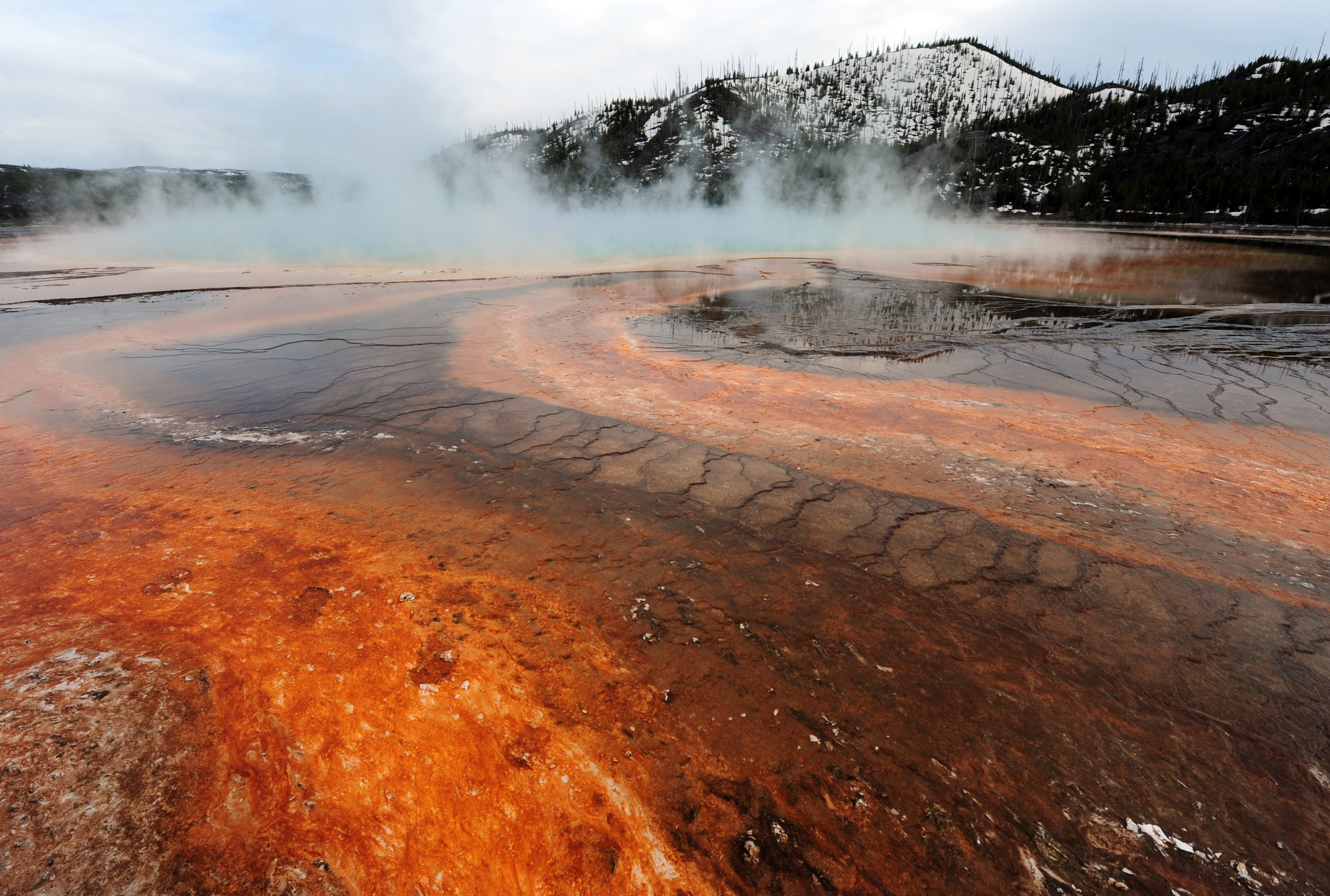 Yellowstone supervolcano has just been hit by more than 230 earthquakes in one week
