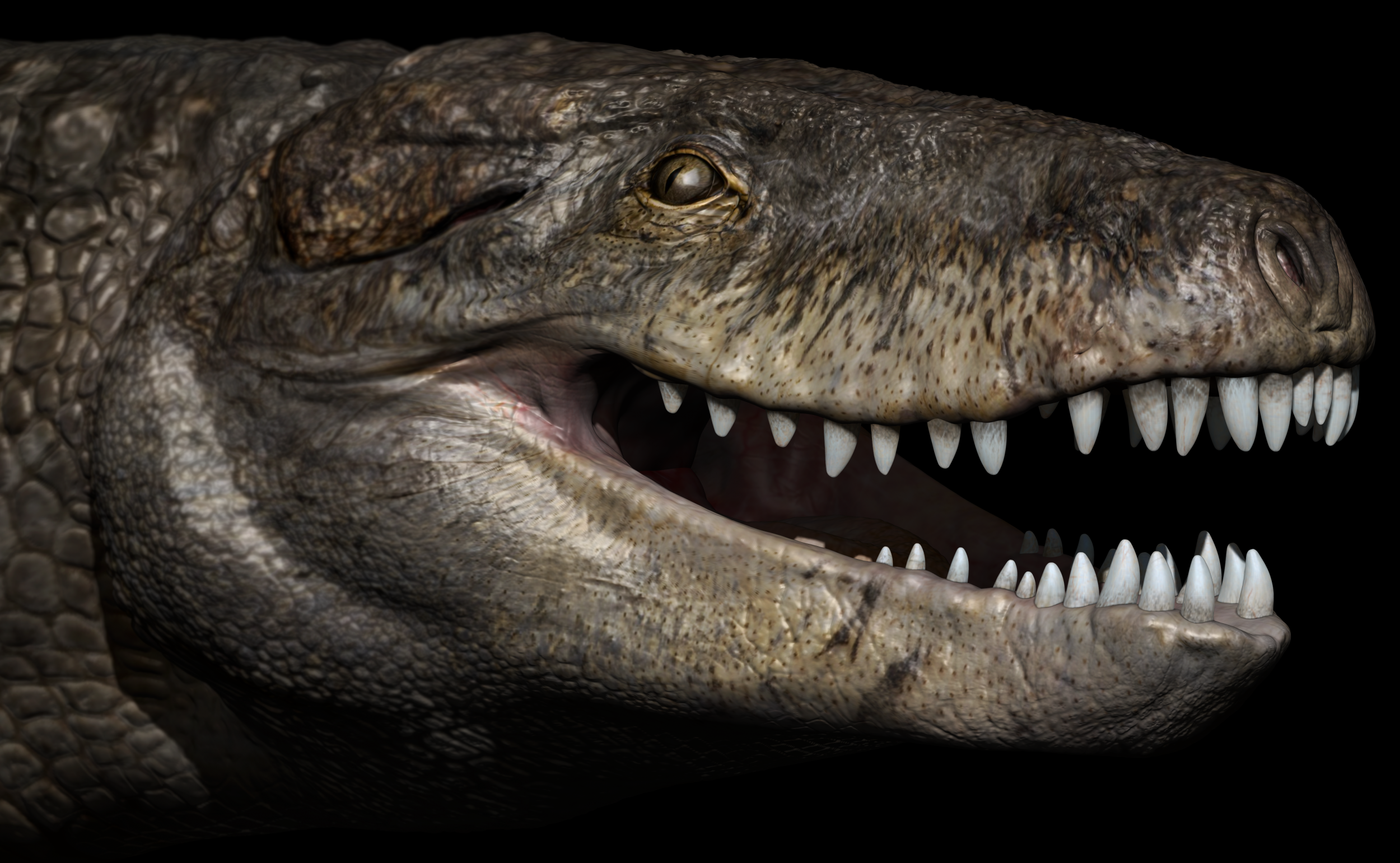 43c383b2e Ancient Giant  Ghost  Crocodile With T-Rex-Sized Teeth Discovered in  Madagascar