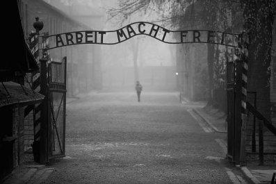 7-11-17 Auschwitz