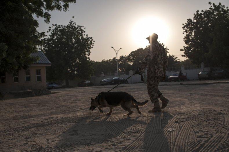 Nigeria sniffer dog