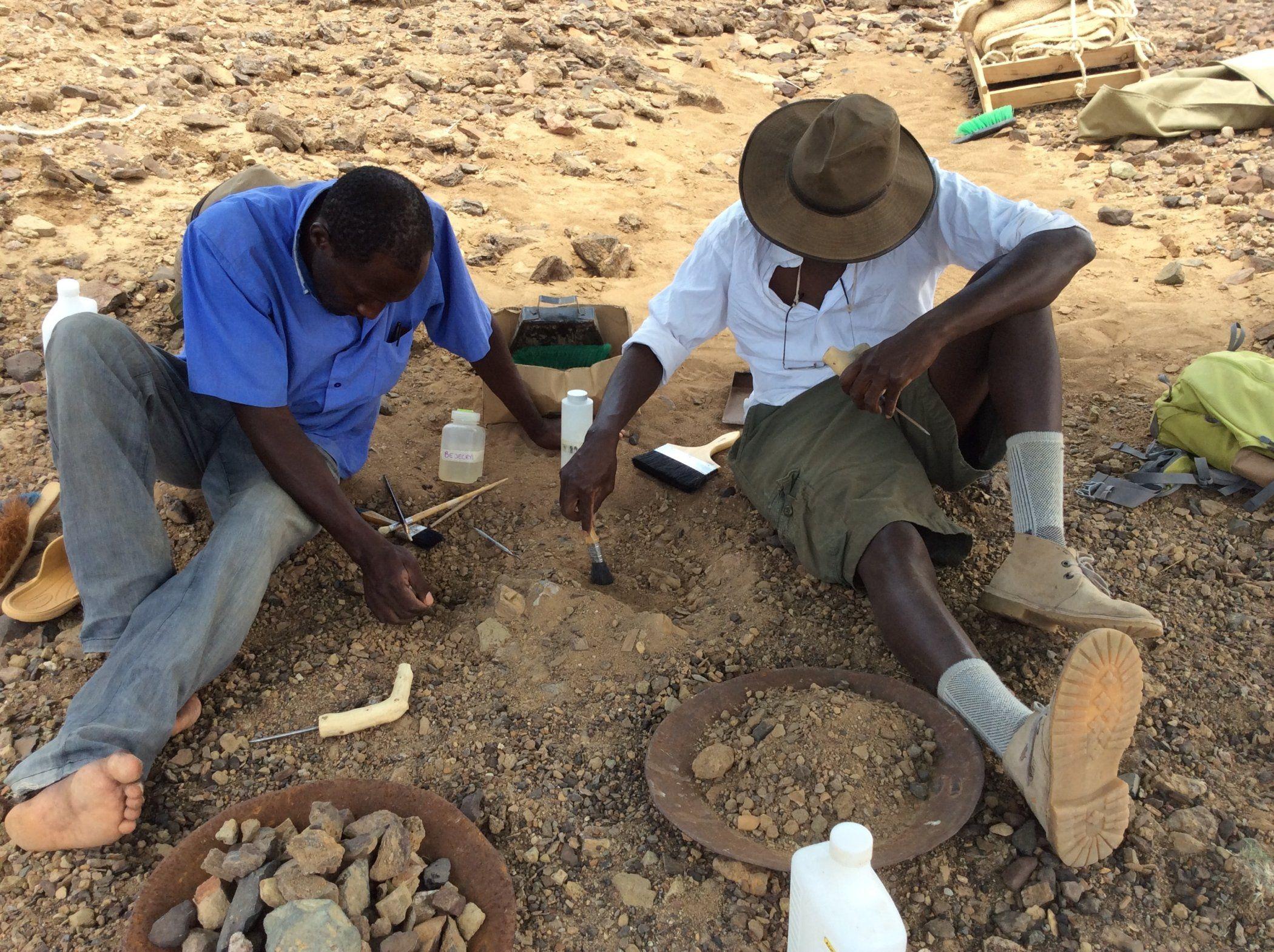 Excavating Alesi