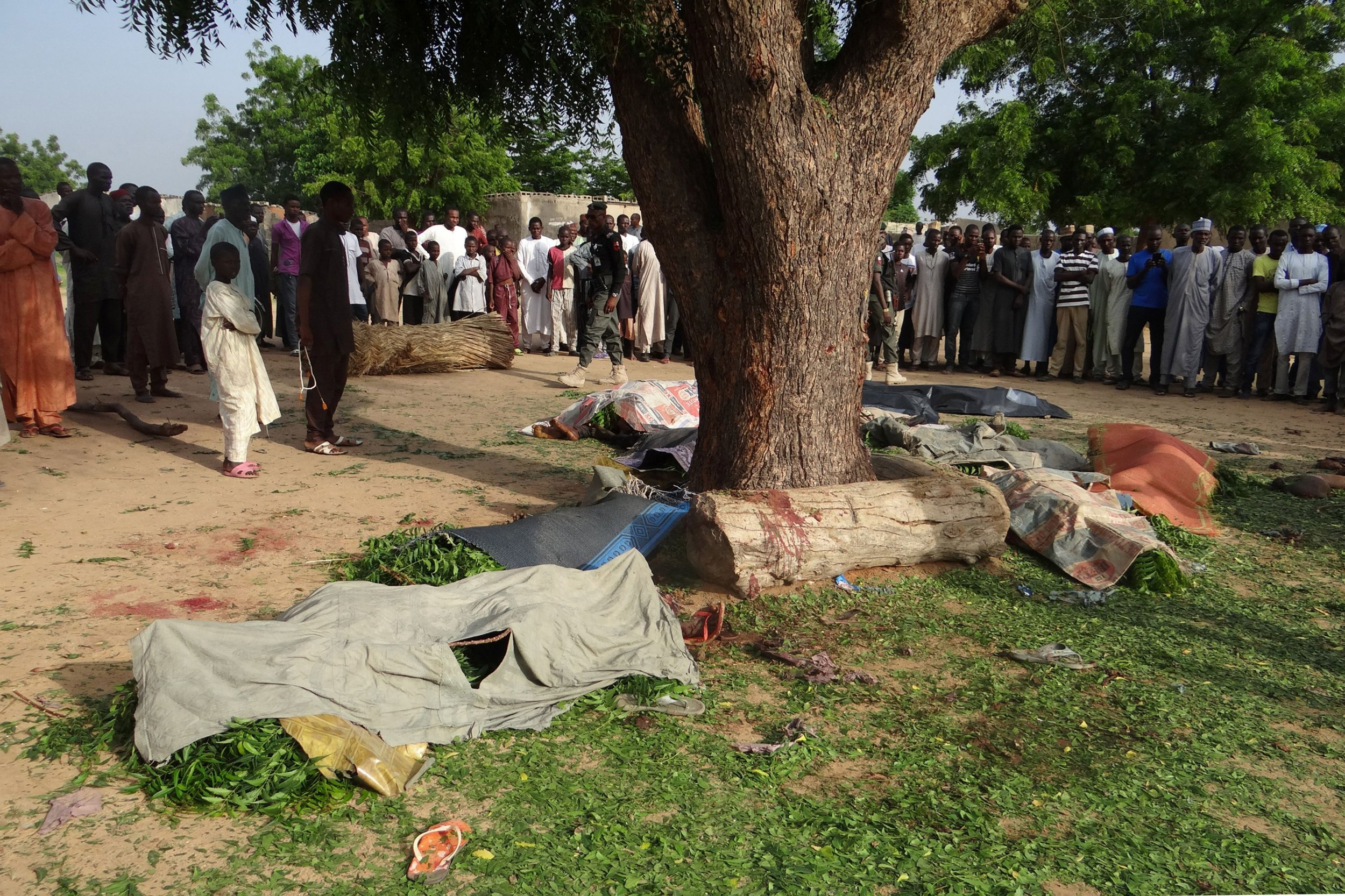 Maiduguri female suicide bombers