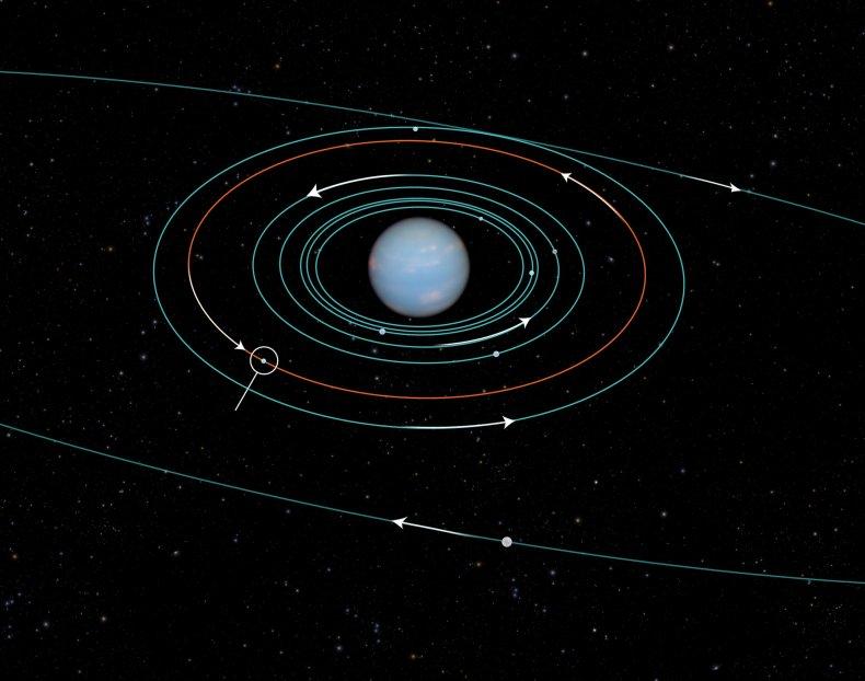Neptune orbits