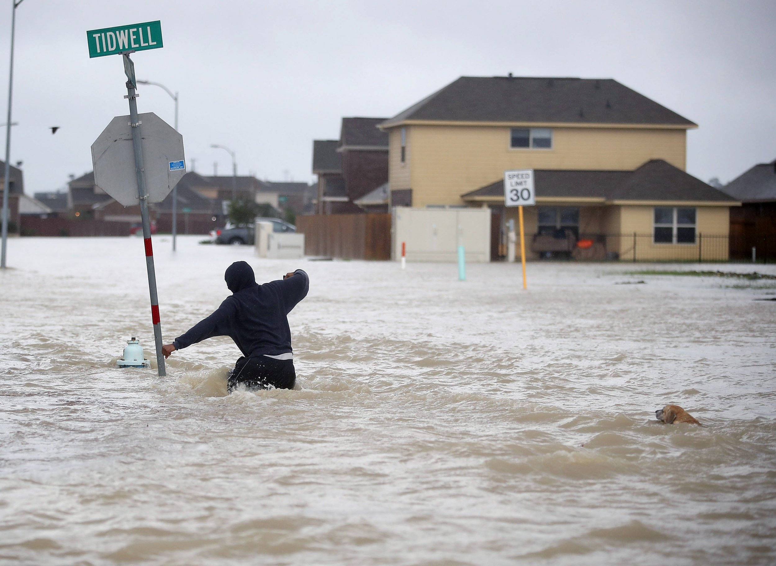 free hurricane katrina research paper