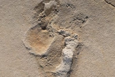Trachilos footprint