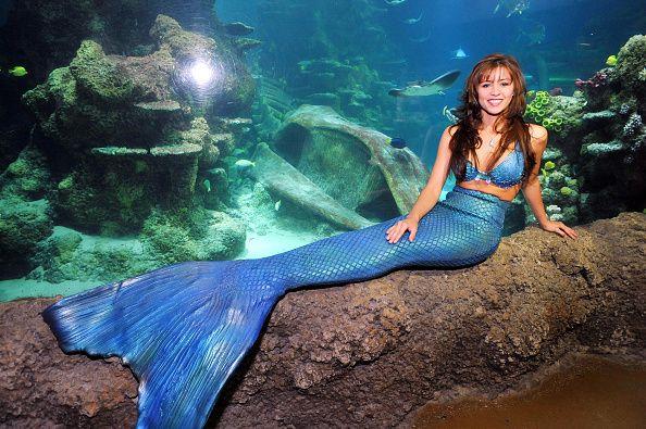 0911 Mermaids Weeki Wachee