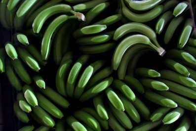 0914_green_bananas