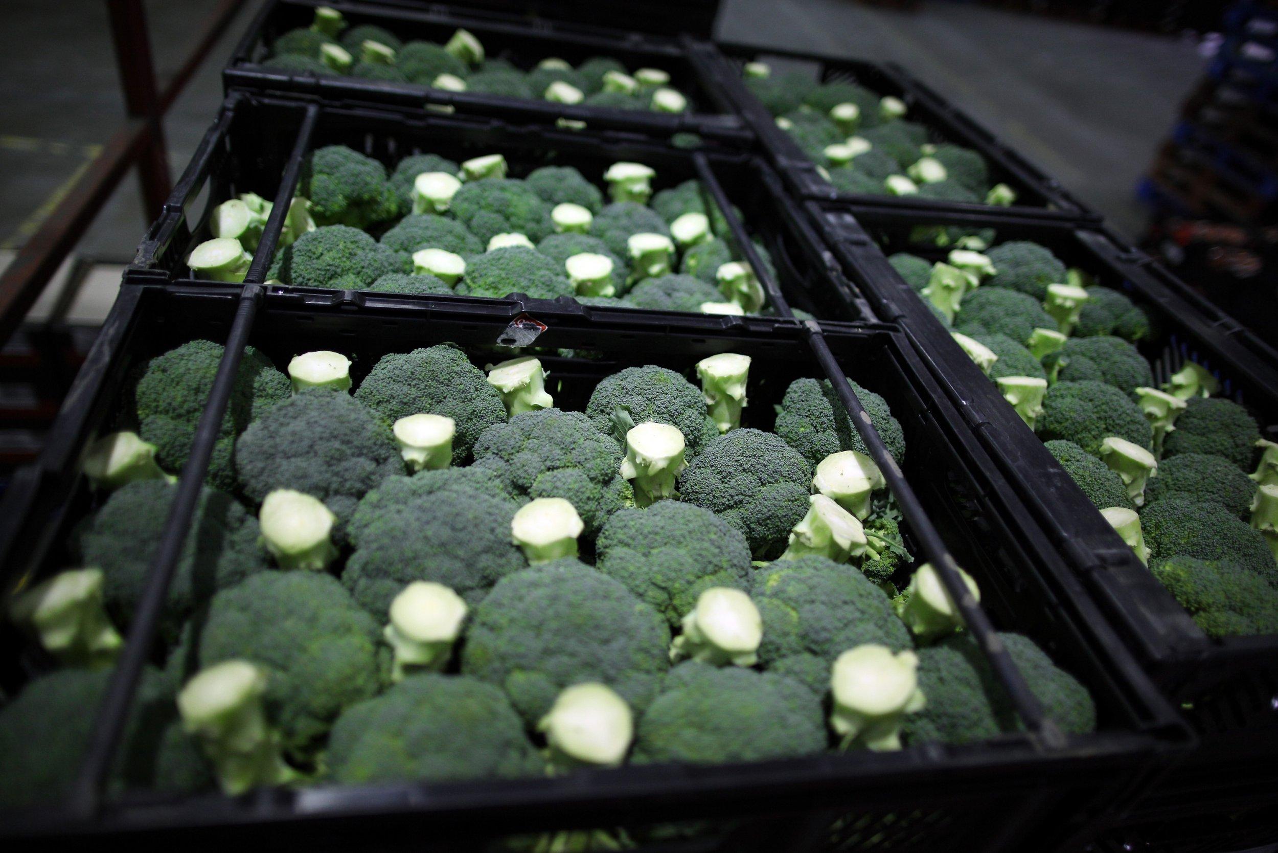 20_09_broccoli