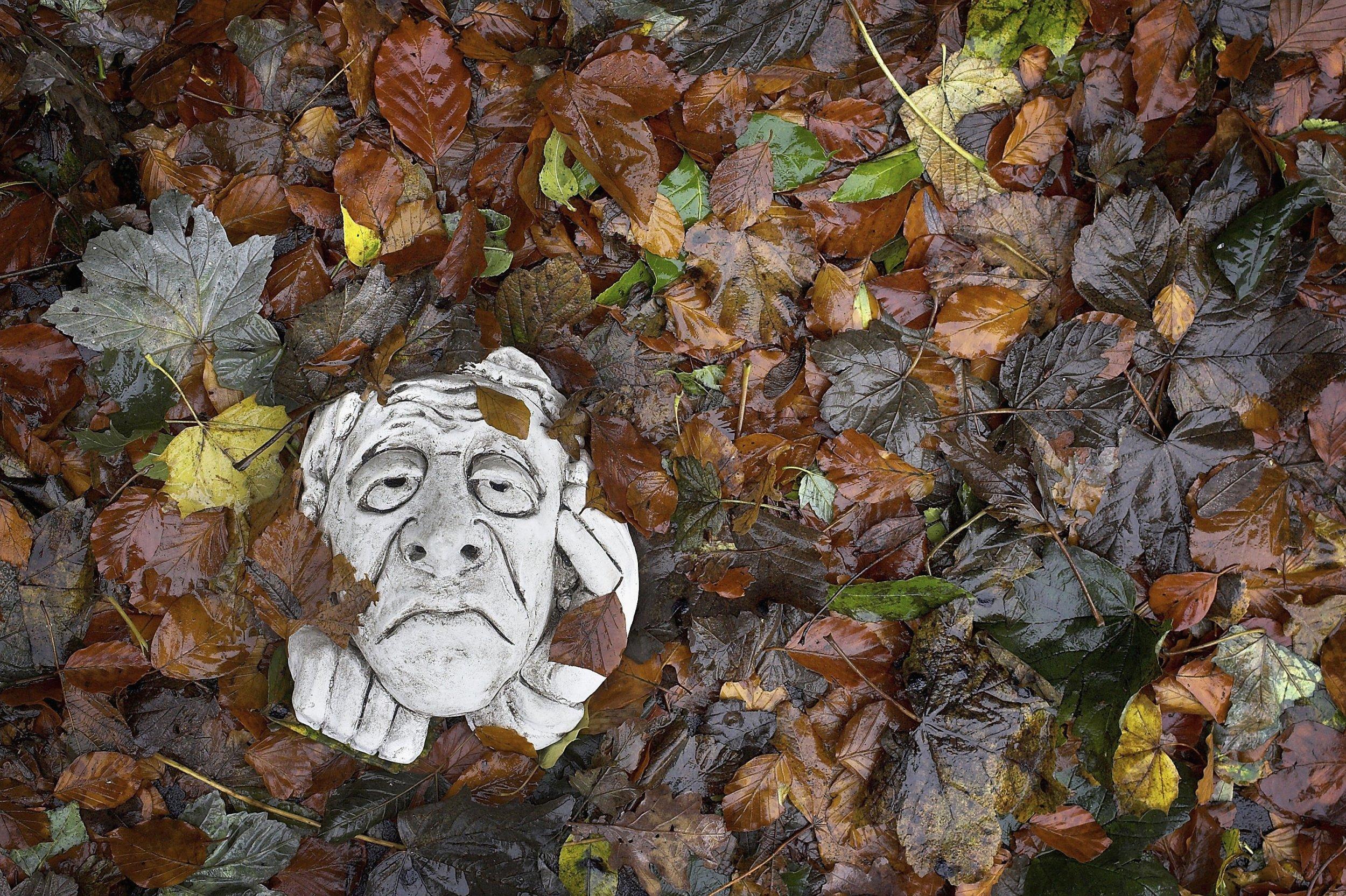Fall Leaves Sad Mask