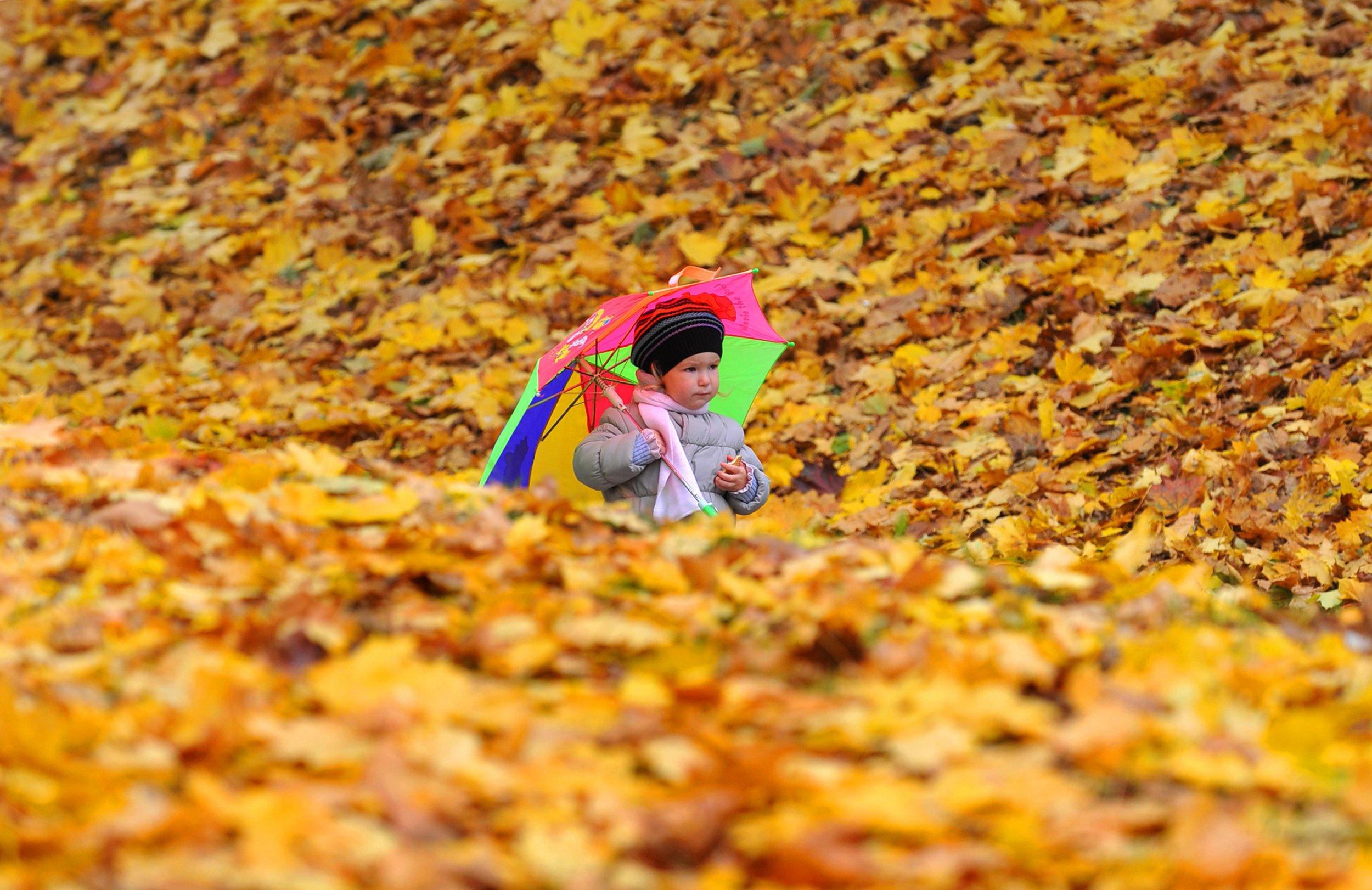 09_21_autumn_seasons