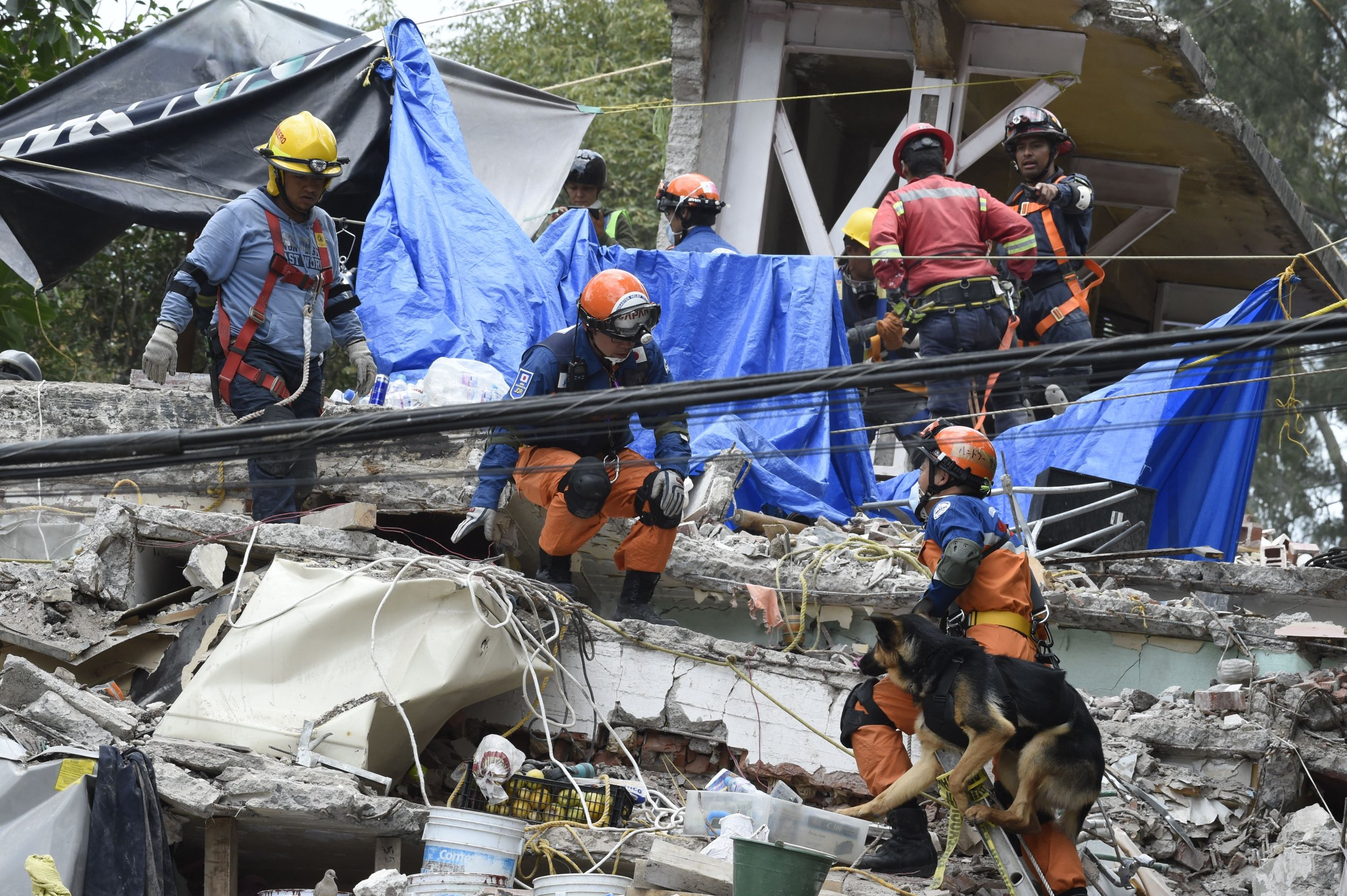 The impact of earthquakes on human activities