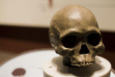 09_29_skull
