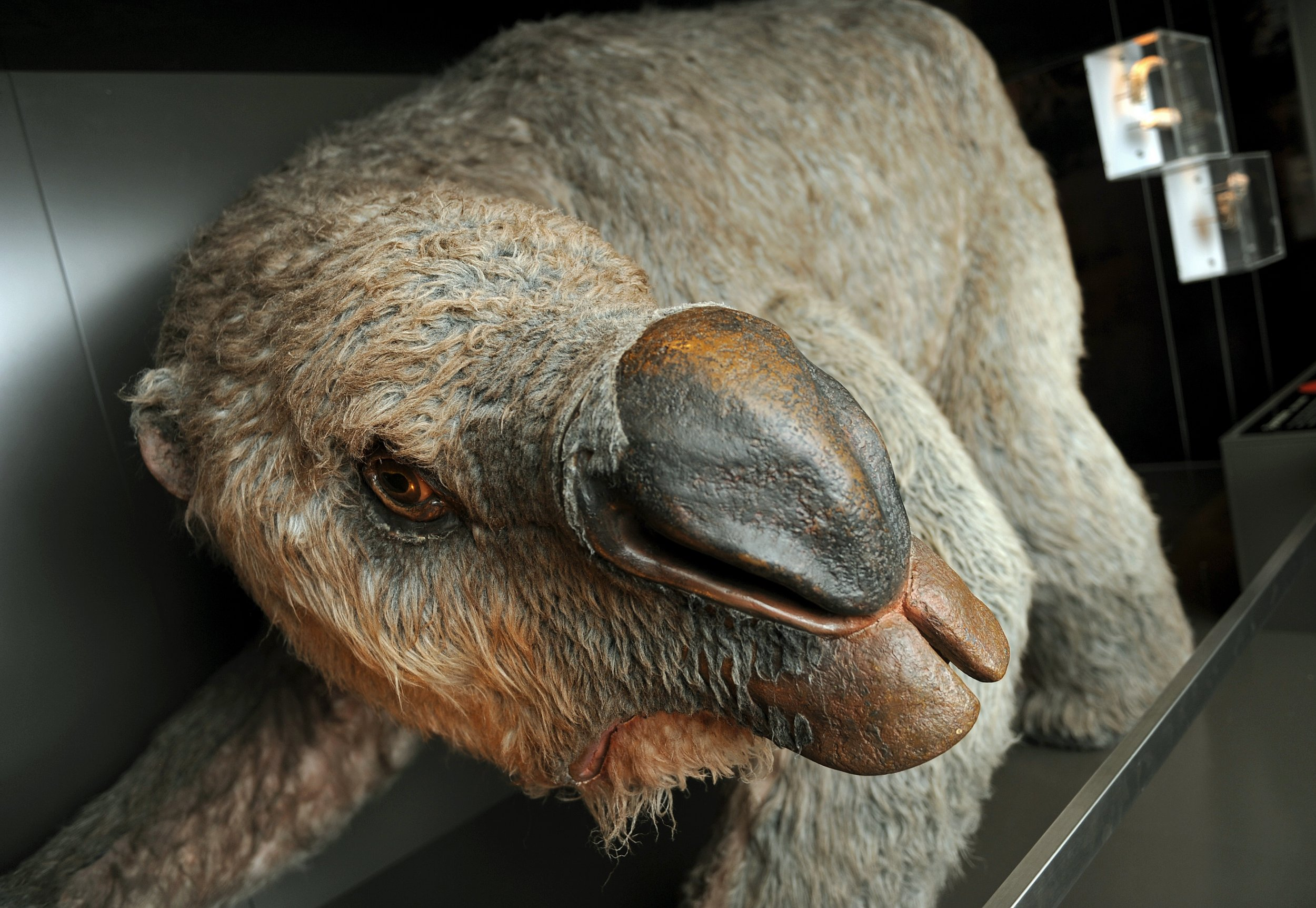 Diprotodon_giant_Monster_Wombat