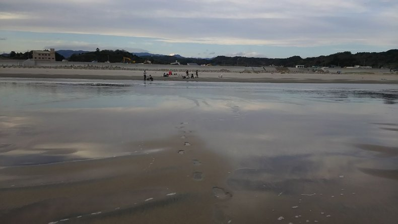10_04_fukushima_beach_radiation