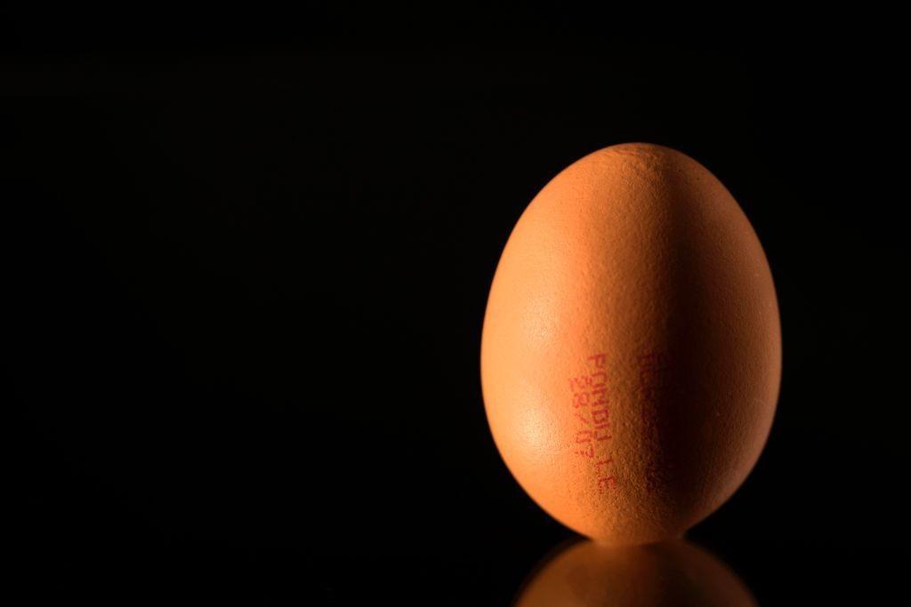 Cancer drug treatment chicken egg japan