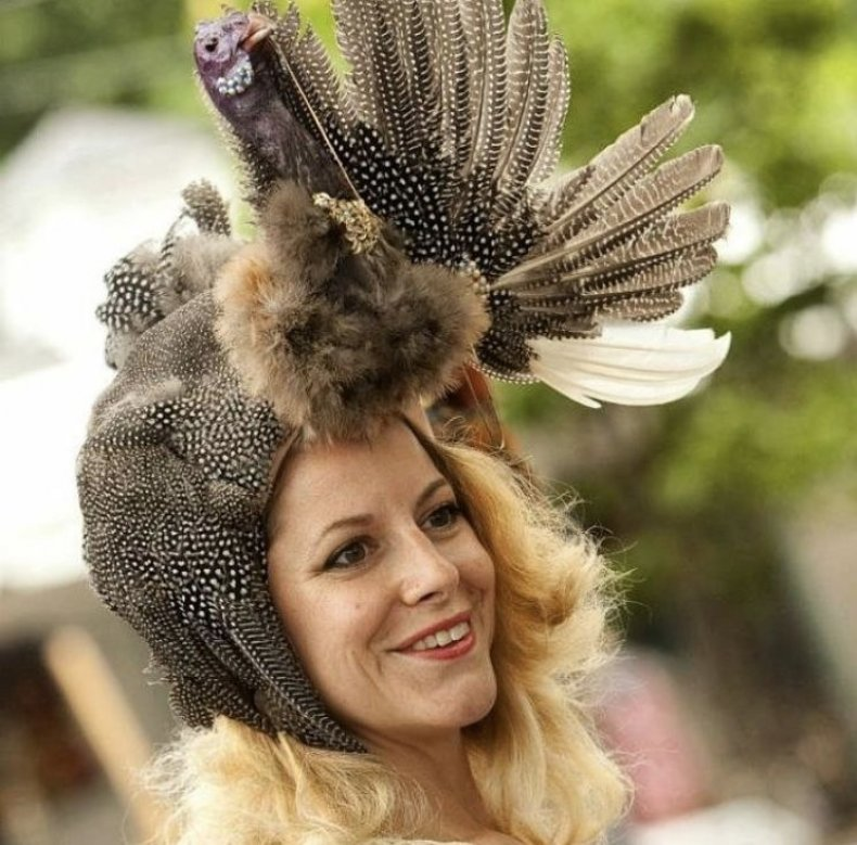 Bird_Hat_Alternative_Taxidermy