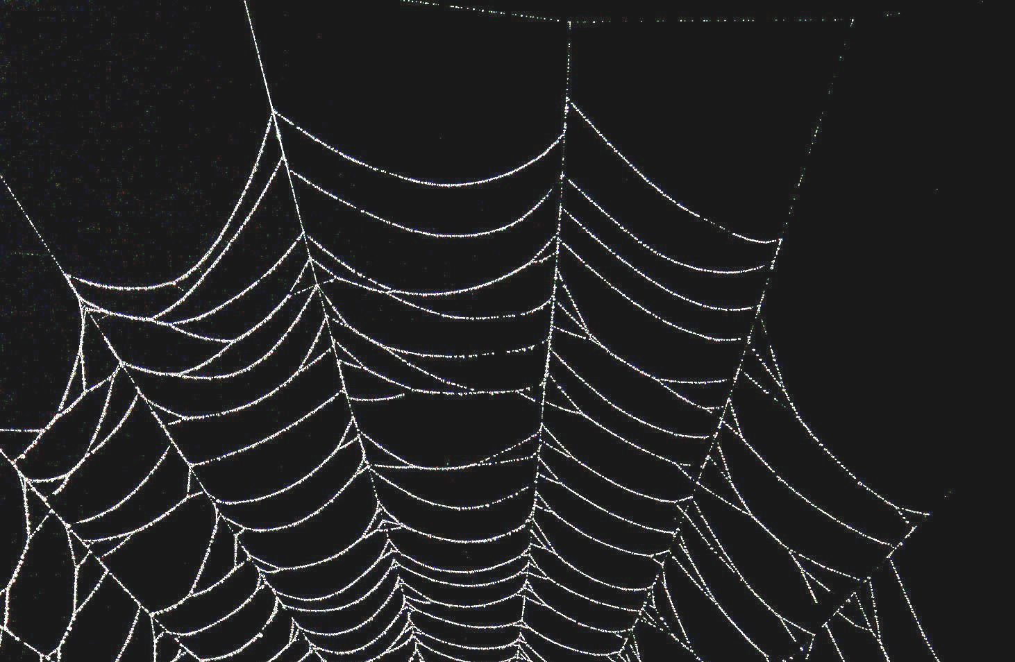 how to pay on dark web anonymously