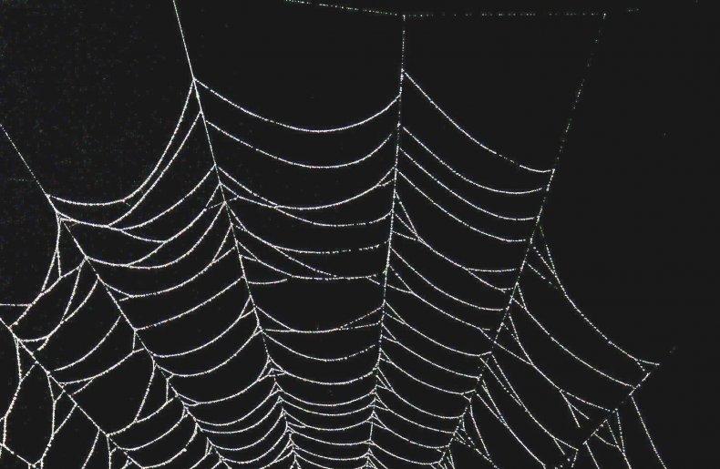 dark web drug markets offline