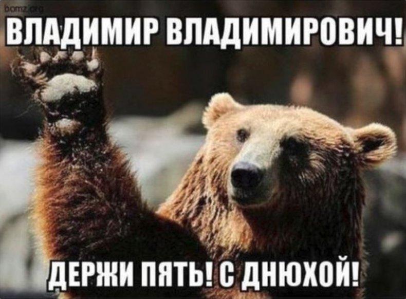 putin birthday bots russia twitter