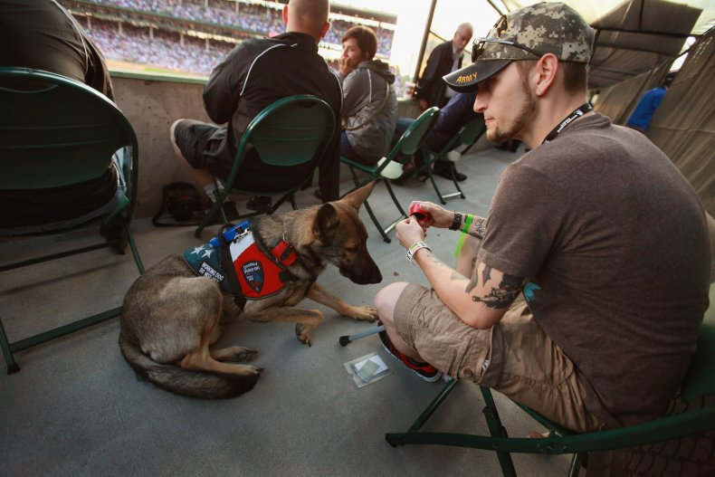 Brad Schwarz Service Dog