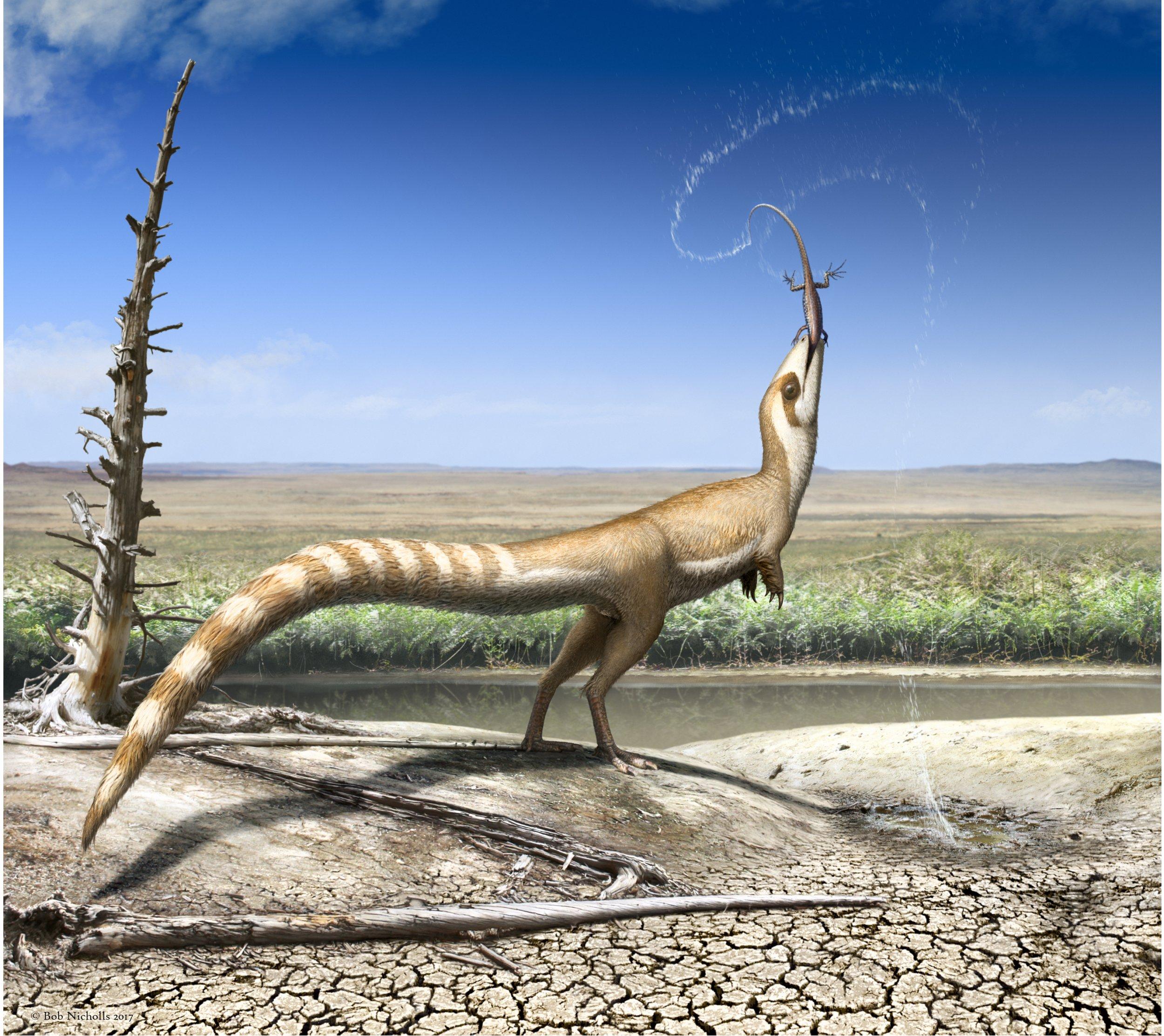 10_26_sinosauropteryx_dinosaur_camouflage