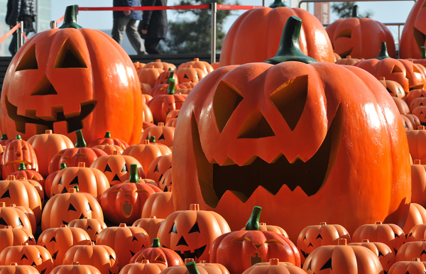 Everything spooky airing over Halloween weekend
