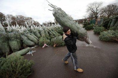 1101_christmas_tree