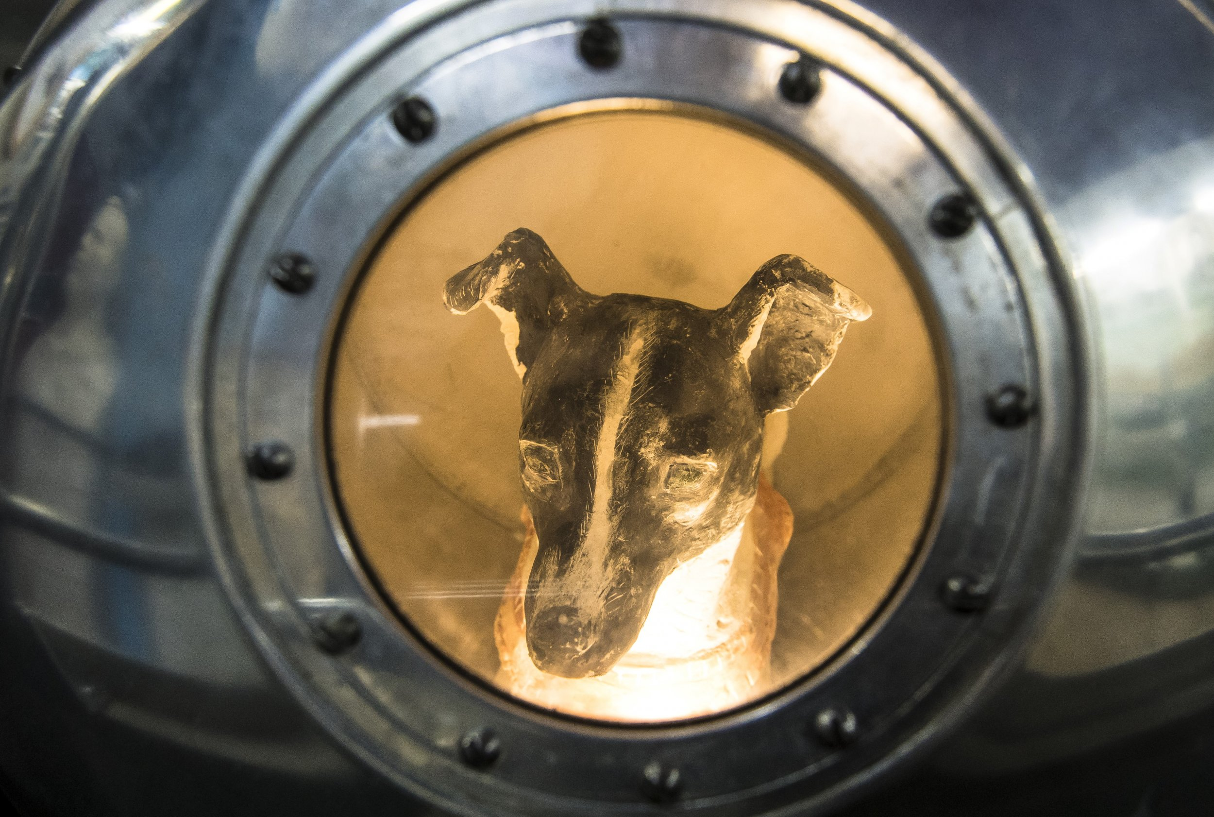 11_02_First_dog_in_space