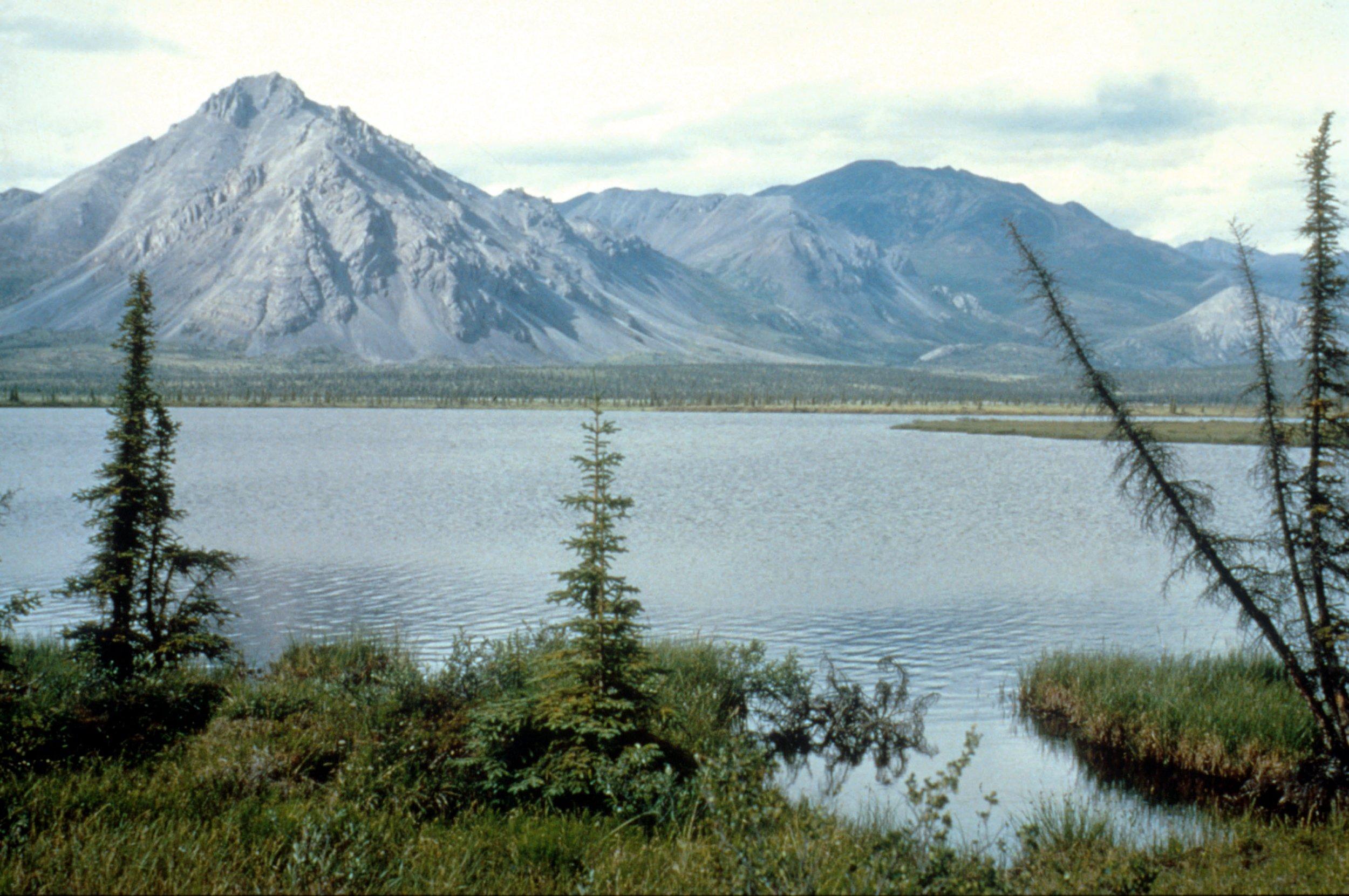 11_3_Artic Wildlife Refuge