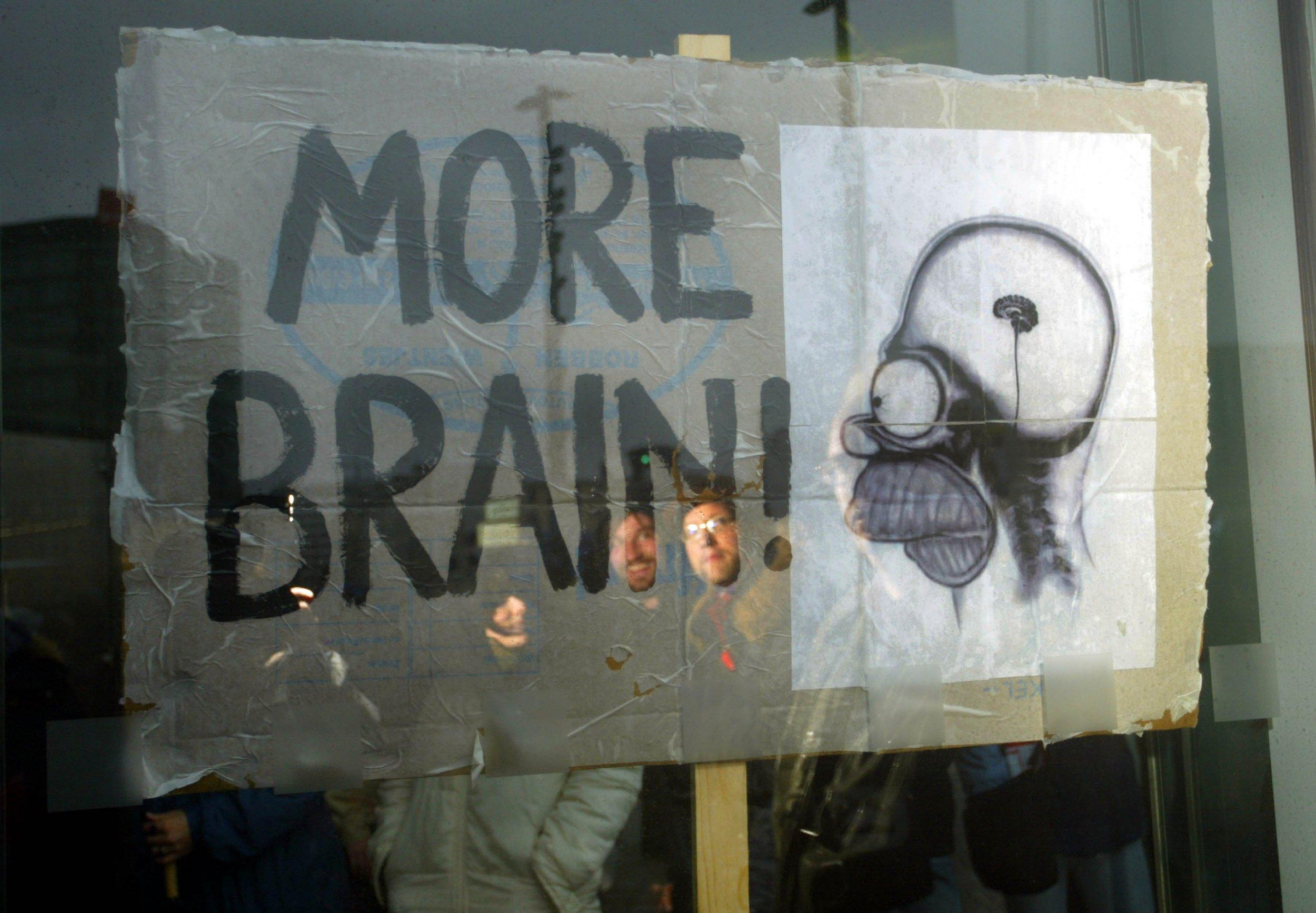 11_14_brain