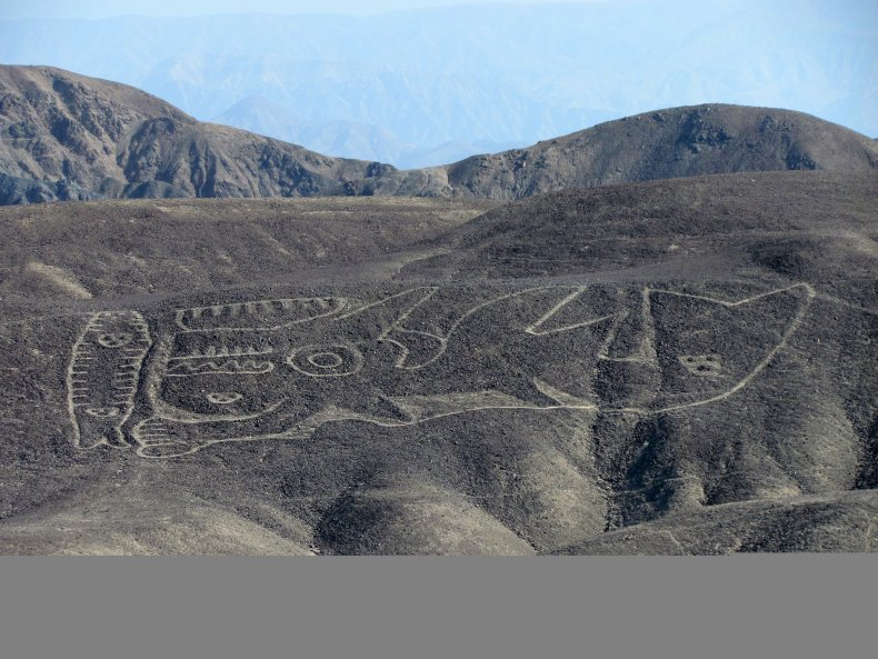 Orca-Geoglyphe_DAI2