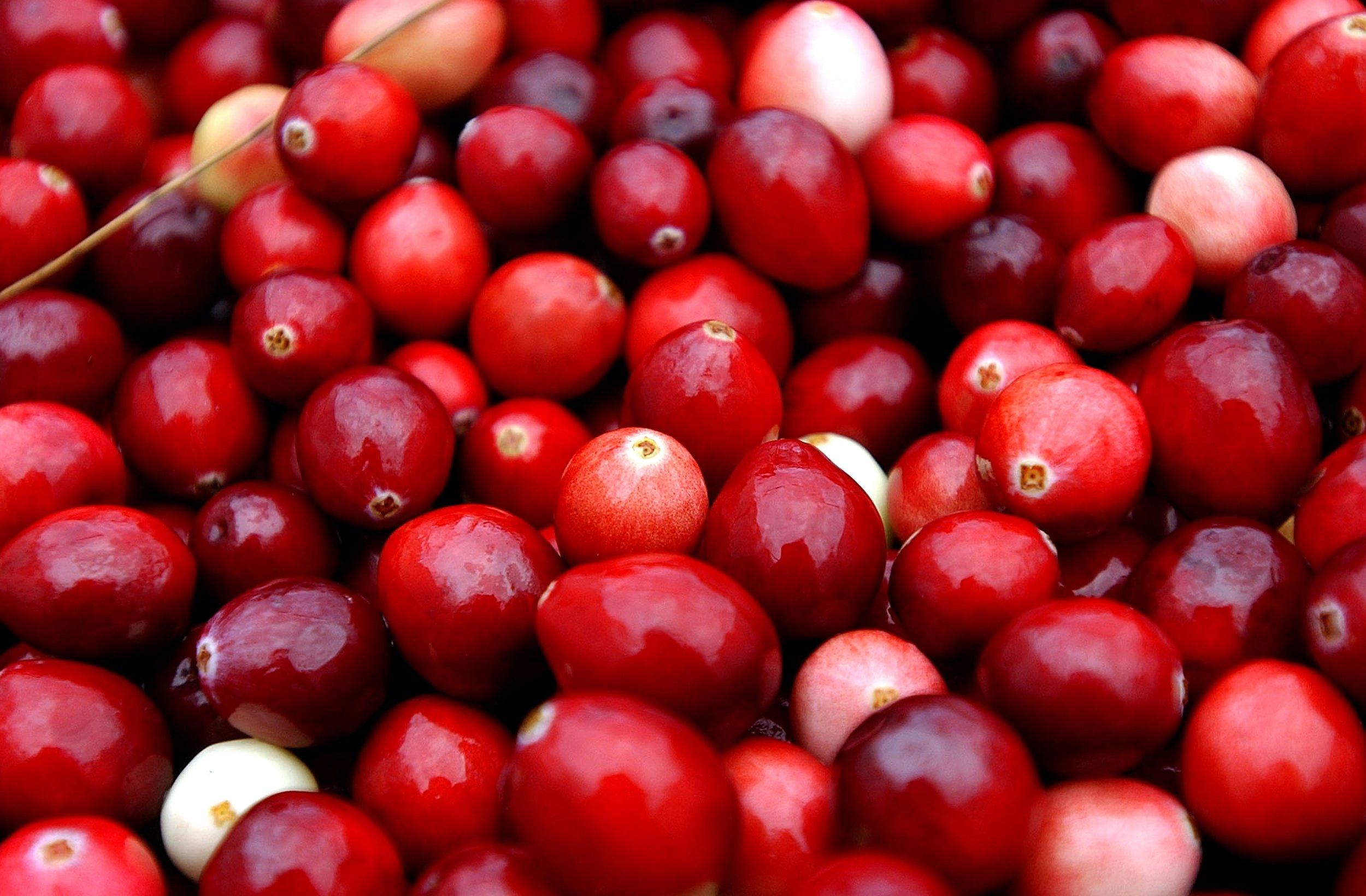 11_17_cranberries