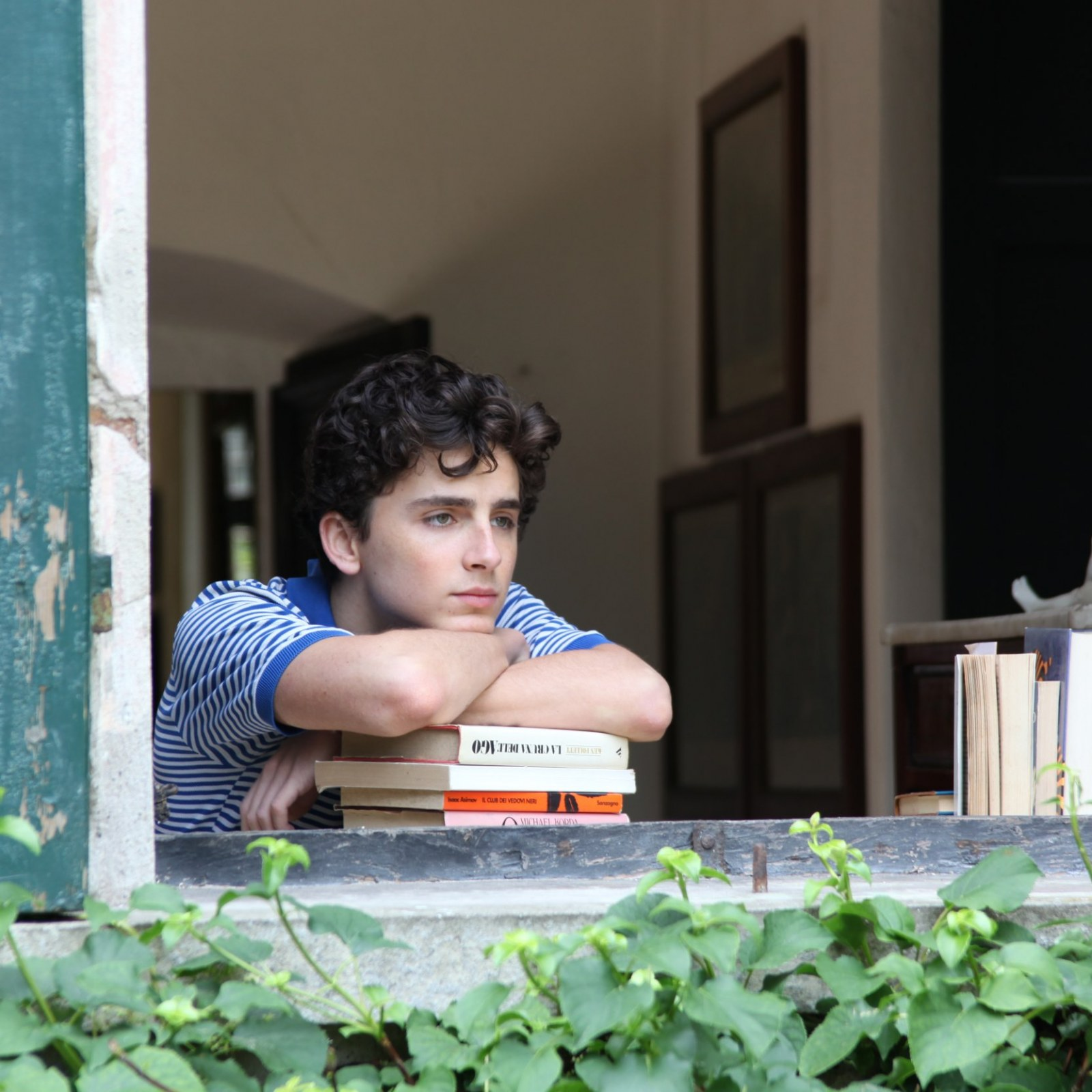 """Timothee Chalamet playing a 17 year old boy in """"Call me by your name"""""""