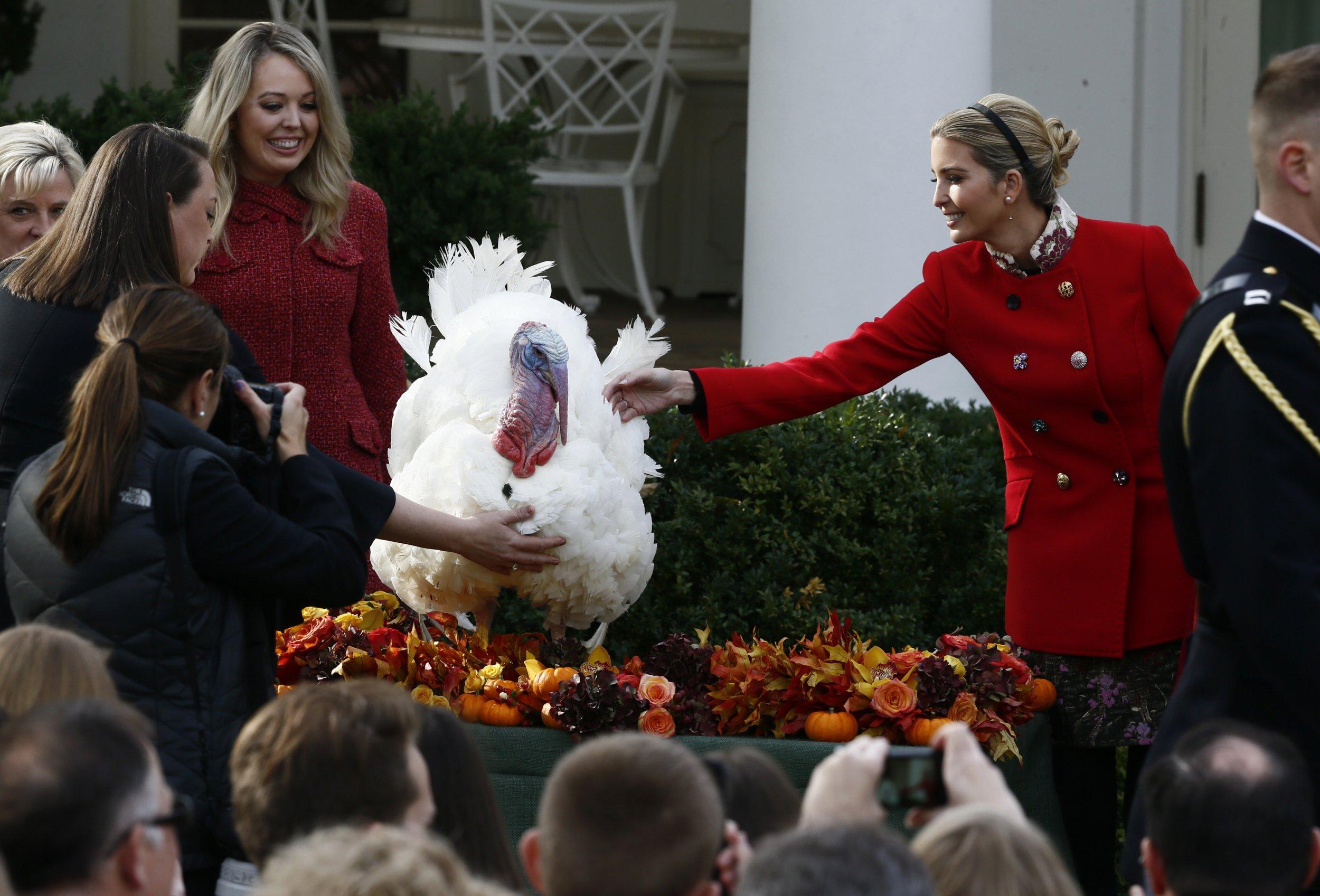ivanka trump thanksgiving