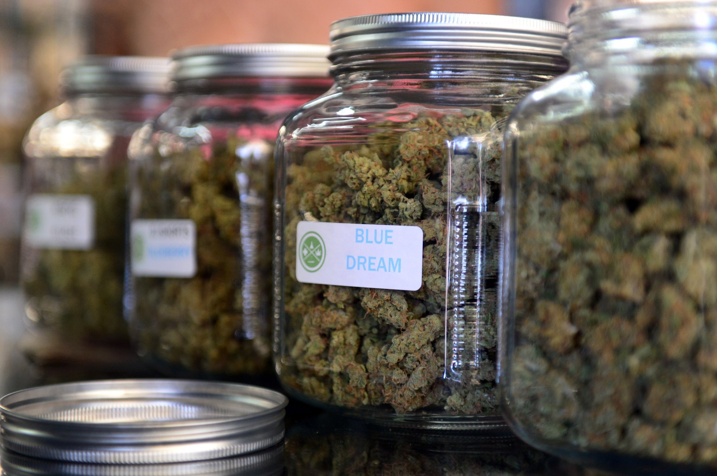 12_3_Medical Marijuana
