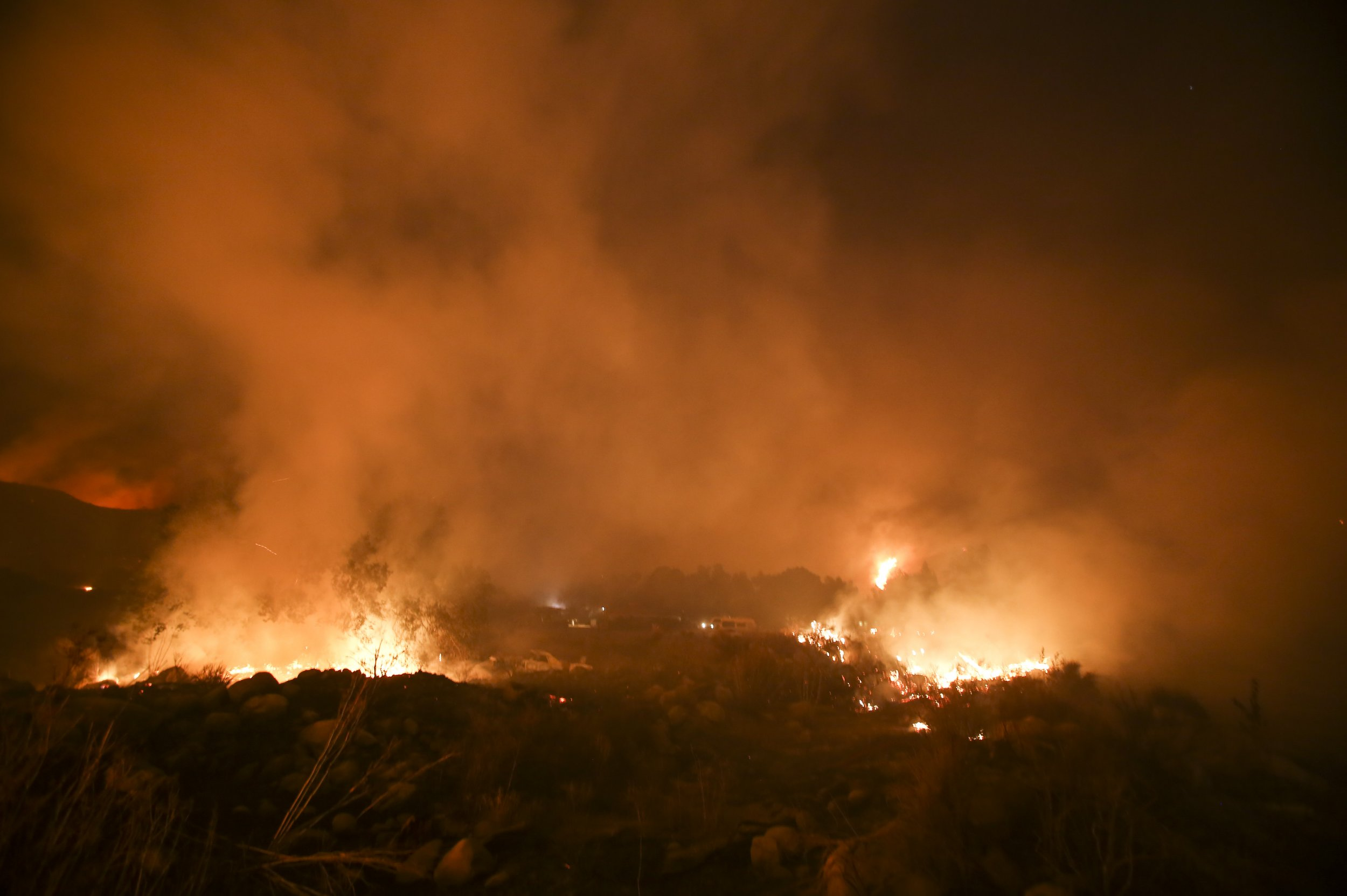 California wildfire hero who saved rabbit goes viral