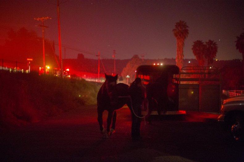 1208_Horses_Fire