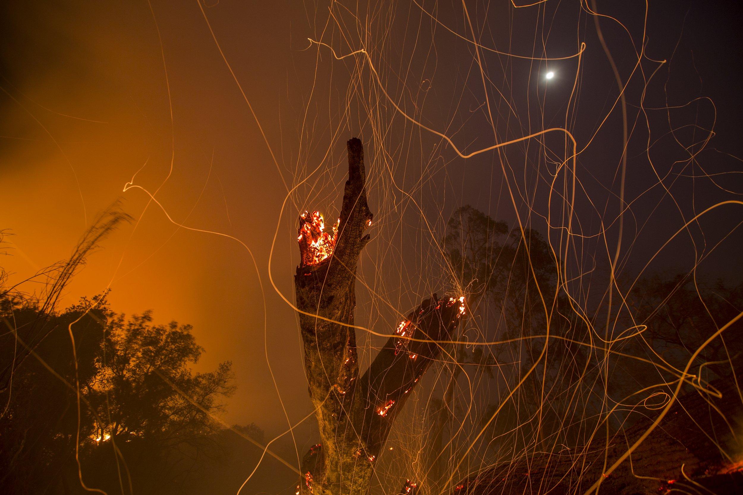 1208_California_Fire