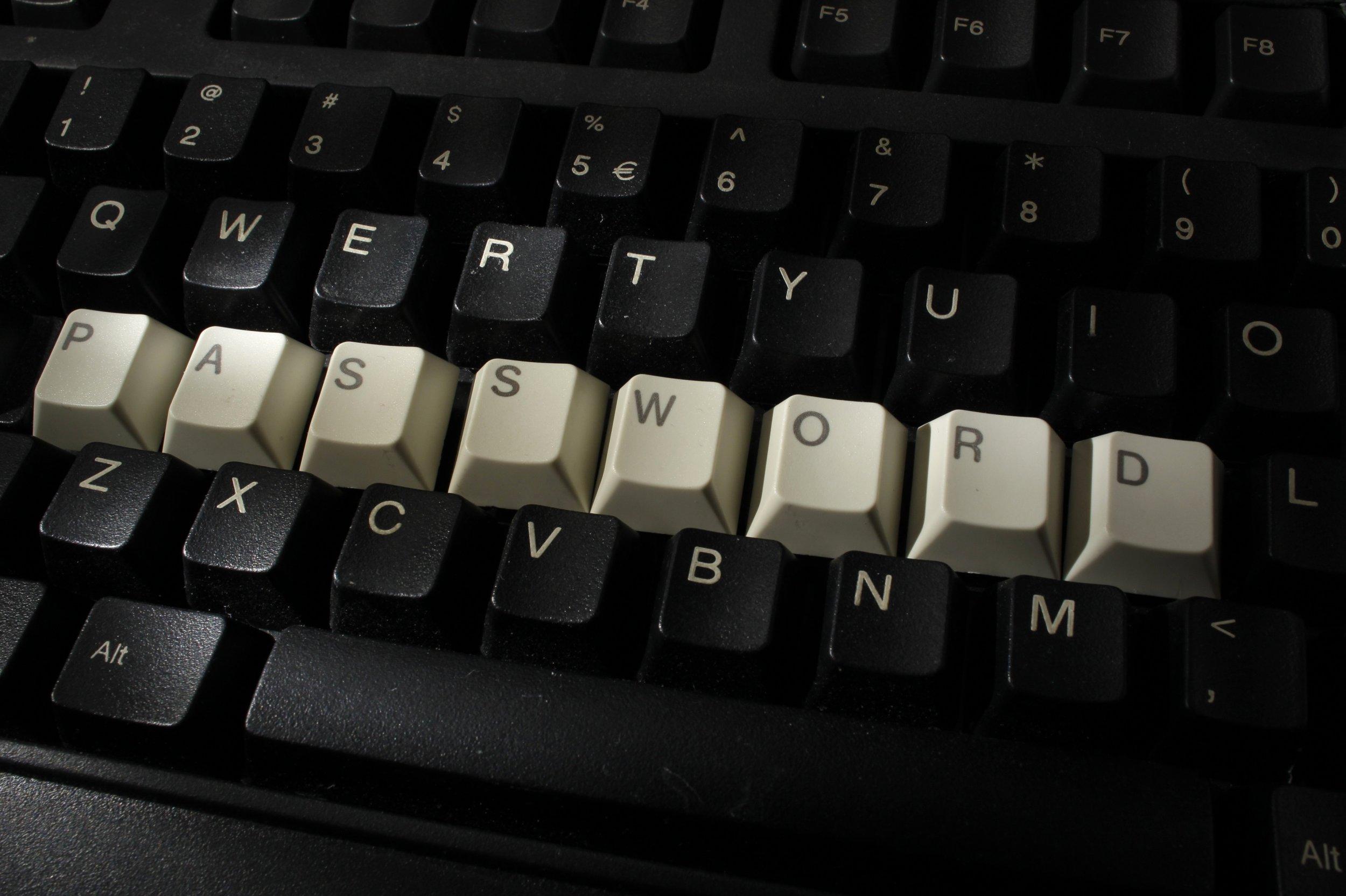 dark web youporn hacked database