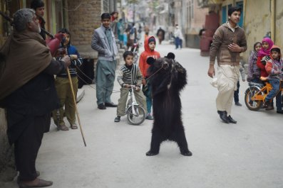 12_23_Dancing Bear