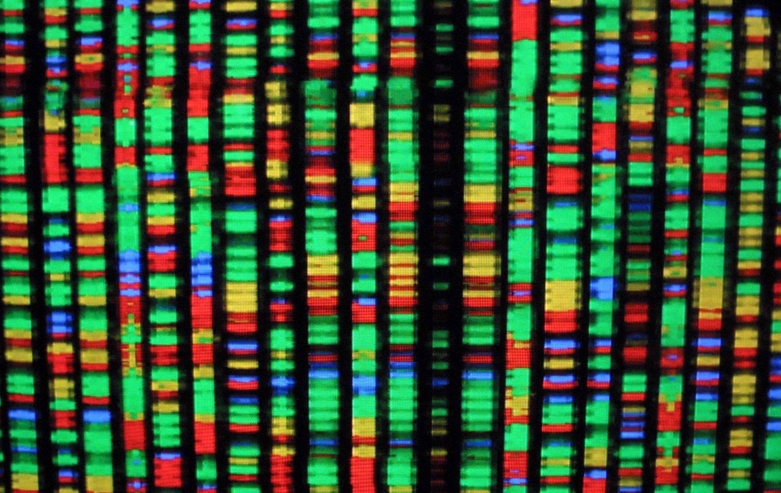 12_26_DNA