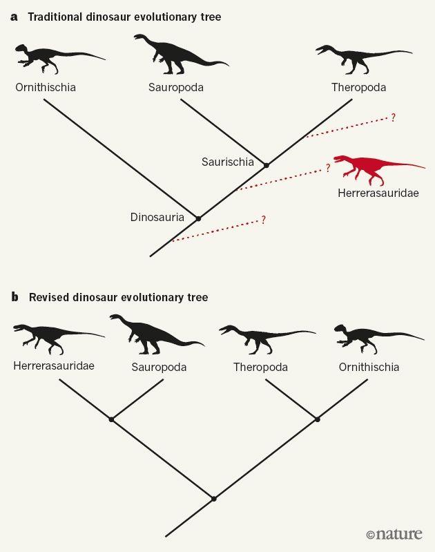 Dinosaur_Family_Tree_Rewrite