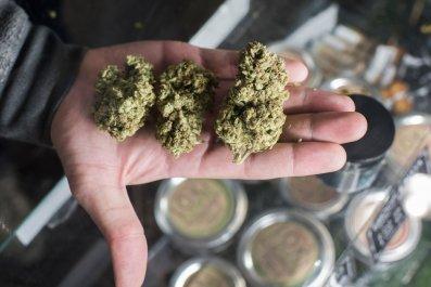 12_30_Marijuana